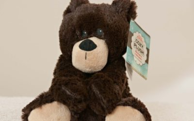 cozy-plush-brown-bear